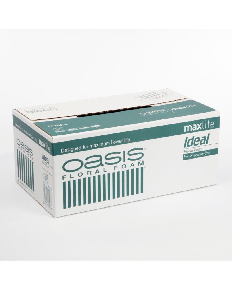 Oasis® Ideal Floral Foam WET MaxLife (20 Bricks)