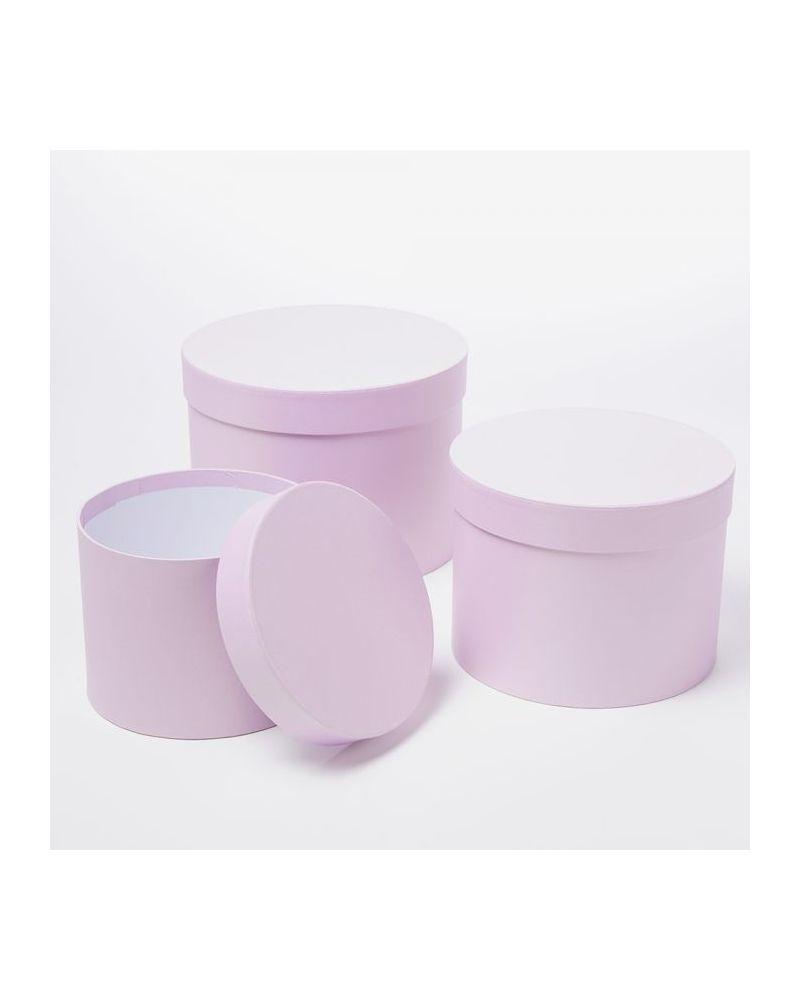 Oasis® Symphony Hat Box (Set of 3) - Lilac