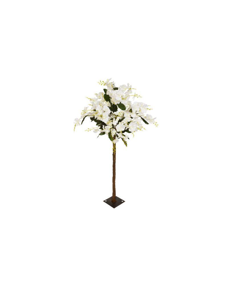 140cm White Orchid Tree Tree