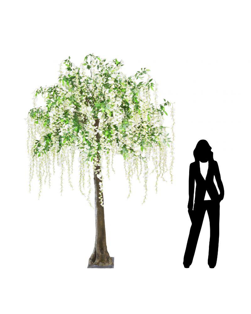 280cm Wisteria Tree