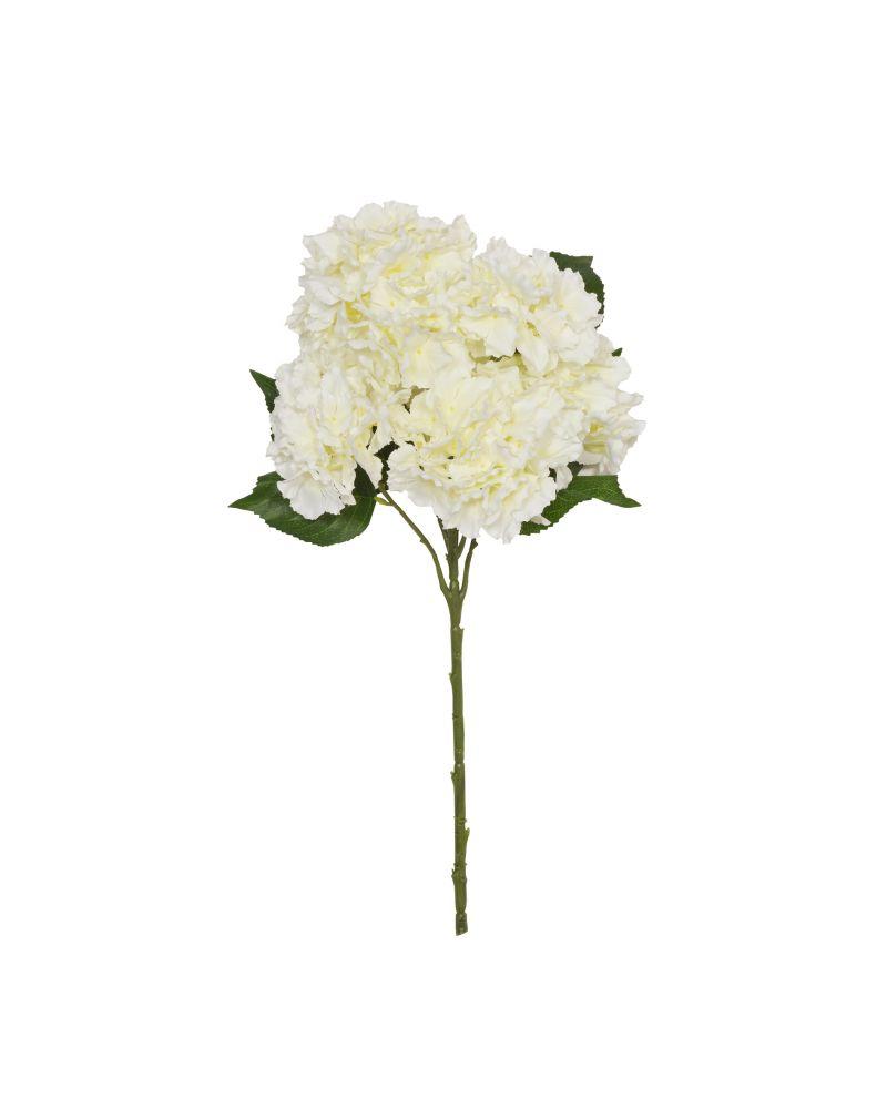 56cm Cream Hydrangea 7 Stem